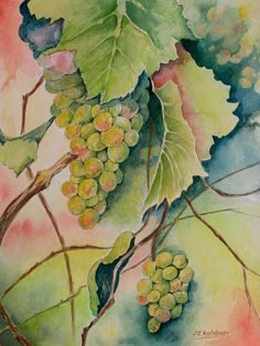 """For the Wine Lovers: """"In the Vineyard""""  Available as a print matted 11"""" x 14"""" and as a greeting card"""