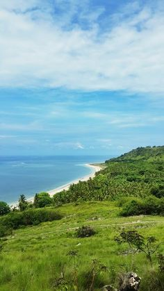 Lewoleba, Lembata, Timor, NTT, Indonesia. This is where the tribe that hunt whales live.