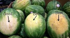 How to Cut a Perfect Bowl Full of Watermelon « Food Hacks