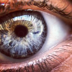 Gray Eye - highly reflective, almost nebulous