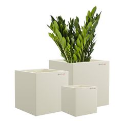 Buy Beautiful Bar Cluster Planters, A modernist delight, the Yuccabe BAR Planter plays with the cuboid to create a co-ordinated range of planters with infinite potential. Growing Plants, Planter Pots, Bar, Canning, Flowers, Environment, Beautiful, Children, Gift