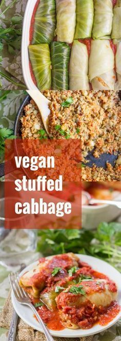 Quinoa & Lentil Stuffed Vegan Cabbage Rolls