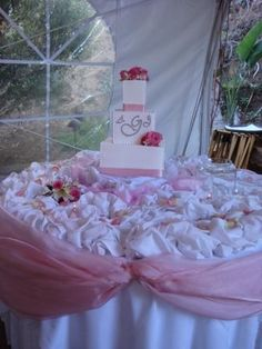 Google Image Result for http://sherisflowers.files.wordpress.com/2009/05/cake-table-with-pink-organza.jpg