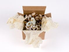 #Jewelry #Packaging