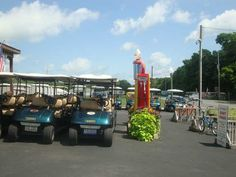 How to get around Put-in-Bay, Ohio. Grab a golfcar when you hop off of Miller Ferry. Akron Ohio Moms.
