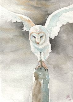 Items similar to Out of the Dark - Barn Owl - Print of Original Watercolor on Etsy Owl Watercolor, Watercolor Animals, Watercolor Paintings, Owl Paintings, Out Of The Dark, Body Sketches, Felt Owls, Owl Pictures, Owl Print