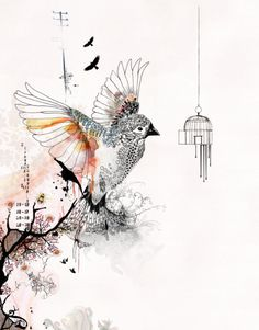 Prints illustrations, Bird cage art, Living room art, Bird art drawing, Orange and gray