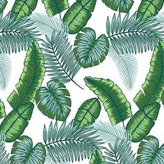 Keep calm and palm on. This palm print is available exclusively on @patternbank! #palm #palmleaves #palmfronds #palmtrees #pattern #patterndesign #patterndesigner #print #surfacedesign #surfacepattern #surfacepatterndesigner #textile #textiledesign #textiledesigner #patternbank #newonpatternbank #artistsoninstagram #lizeetish #traveltuesday #thatsdarling #mybeautifulmess IG: @lizeetish