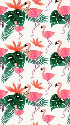35 Trendy Ideas for wallpaper celular fofo flamingo Pink Wallpaper Backgrounds, Flamingo Wallpaper, Tropical Wallpaper, Bird Wallpaper, Watercolor Wallpaper, Summer Wallpaper, Homescreen Wallpaper, Iphone Background Wallpaper, Trendy Wallpaper