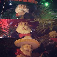 Mariachi Santas Mexico, Texas, Santa, Christmas Tree, Teal Christmas Tree, Xmas Trees, Christmas Trees, Texas Travel, Xmas Tree