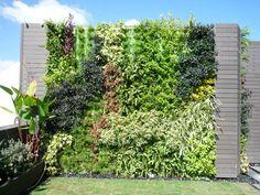 Muro de Minigarden Vertical en casa privada en Honk Kong (Caballo Living Private House