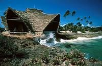 Want to buy your very own island? Chumbe Island: Tanzania's Stunning Coral Park Reserve Tanzania, Light Pollution, Girls Getaway, Destination Voyage, Island Resort, Beach Pictures, Beautiful Islands, Travel Destinations, Travel Tips