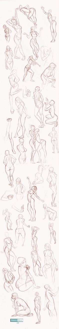Studies Part II by juarezricci