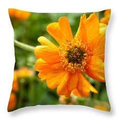 """Spring Is Here Throw Pillow by Zina Zinchik.  Our throw pillows are made from 100% spun polyester poplin fabric and add a stylish statement to any room.  Pillows are available in sizes from 14"""" x 14"""" up to 26"""" x 26"""".  Each pillow is printed on both sides (same image) and includes a concealed zipper and removable insert (if selected) for easy cleaning."""