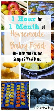 Wanting to make homemade baby food in one afternoon? Try this strategy to get a month's worth of food in one hour with 40+ Stage 1 Baby Food Recipes. #babynutrition #babyfoodrecipes