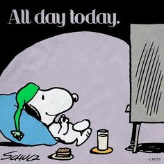 All day today. Snoopy watching TV.