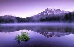 Reflection Lake at Mt. Rainier - Photography by Jeremy Jackson