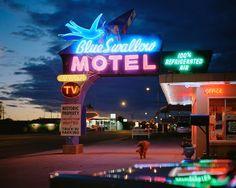 Aquellas sombras del camino azul donde están? yo las comparo con cipreses que vi solo en sueños. @ludeshaz #photoofday #photographer #motel #night #lights