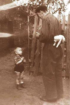 Mutluluktan birkaç saniye öncesi, 1955