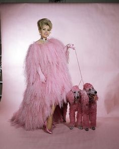 Zsa Zsa Gabor In Vulture Pink Feathers With Poodle Dogs Las Vegas Pretty In Pink, Hollywood Glamour, Old Hollywood, Poodles, Fashion Weeks, Gabor Sisters, Zsa Zsa Gabor, Fierce, Patti Hansen