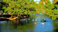 Lago del Rosedal