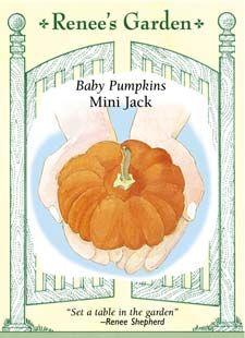 Yay pumpkins.