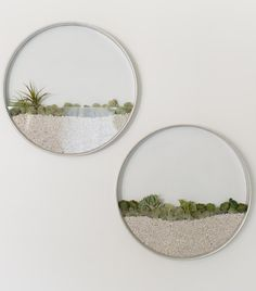 Sleek Vertical Planters Let You Grow an Elegant Garden Indoors - My Modern Met