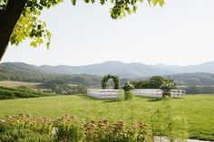 Alfresco wedding ceremony site with mountain views at Pippin Hill Farm and Vineyards in Charlottesville, Va. Farm Wedding, Wedding Ceremony, Virginia Wineries, Charlottesville Va, Blue Ridge Mountains, Summer Weddings, Rustic Charm, Mountain View, Wine Country