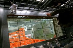 The glass floor in the Tokyo Tower. It's kinda scary....