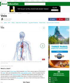 http://biology.about.com/od/anatomy/ss/vein.htm