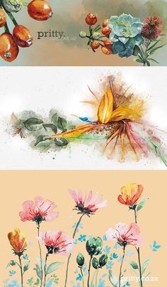 Located in the Garden Route, George Western Cape, we are two sisters living our dream. Our Watercolour Hand Painted Botanical Range ... our online shop to be live soon.   Our website will have all our products and digital assets available for purchase and we deliver countrywide and abroad.  #watercolour #painting #artist #onlineshop #illustrator Hand Painting Art, Watercolour Painting, Illustrator, Cape, The Creator, Sisters, How To Apply, Hand Painted, Content