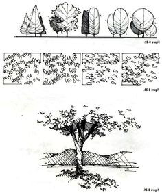 Tree photoshop watercolor trees tree textures architecture graphics landscape drawings architecture sketch landscape drawings 63 drawing architecture sketches texture 50 ideas for 2019 drawing Landscape Architecture Drawing, Architecture Sketchbook, Landscape Sketch, Architecture Graphics, Landscape Drawings, Landscape Designs, Landscape Bricks, Computer Architecture, 3d Architecture