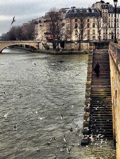 L'ile saint louis vue de l'ile de la cité. Paris