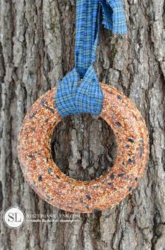 Orange Birdseed Ornaments