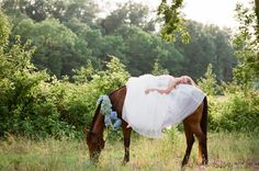 would love to ride in on my horse and decorate her mane and tail with flowers but knowing my luck she would choose the wedding day to act up lol...still an option though :)