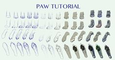 Canine PAW TUTORIAL by Lithroxid on DeviantArt