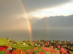 Cully, Canton of Vau, Switzerland
