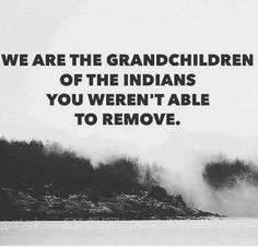 We are the grandchildren of the Indians you weren't able to remove.