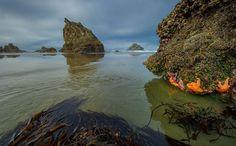 Alex Morley - Google+ - Stunning light this morning at Bandon, Oregon Coast. Bandon Oregon, Oregon Coast, Pacific Coast, Great Week, Beautiful World, Water, Google, Outdoor, Gripe Water