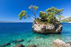 La plage de Punta Rata en Croatie