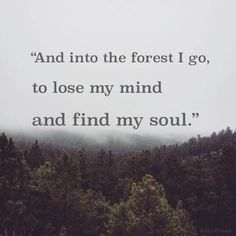 And into the forest I go to lose my mind and go find my soul