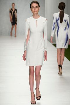 Marios Schwab | Spring 2014 Ready-to-Wear Collection | Style.com. The model is too thin, but I adore the lines and sleeves of this dress.