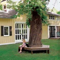 Build a Tree Bench: This comfy, stay-cool spot has room for the entire family and practically looks like it's a part of the tree itself. Put your bench together, and you'll enjoy lounging on it with a favorite book all summer long.