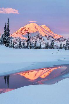Winter scenery, Mount Rainier National park, Washington USA
