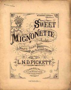 Sheet Music - Sweet mignonette; Waltz song