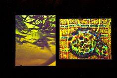 """Cast Glass Diptych, 1989 9"""" x 5"""""""