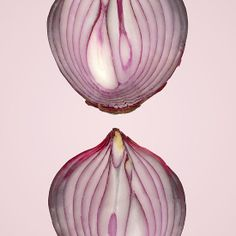 Food - Vegetable - Cross section of a Red Onion