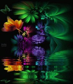 Animated Graphics, Flowers, Flores, Reflections, Water Reflections ...