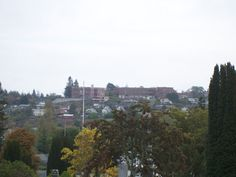 schools on the hill as seen from the cemetery