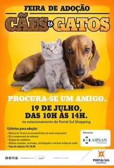 Portal Sul Shopping realiza Feira de Adoção de Cães e Gatos